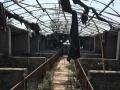 大石桥市新农村村部后 土地 6000平米