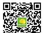 槐荫区张庄路书法、森林公园书法班、匡山书法班培训