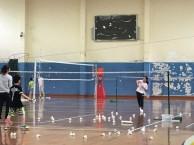 羽毛球培训班 长训班 上海刚健体育