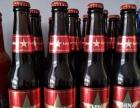 【青岛劲派1314啤酒】啤酒招商啤酒代理