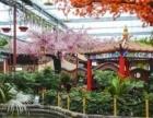 特惠65元青州江南温泉+古村落一日游(含鱼疗)