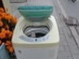 大量品牌全自动洗衣机260元起 现场试机 质量保证