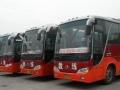 【特价】佛山南海学车增驾A1A3城市公交B2大货车