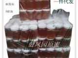 蜂农新采 纯天然优质荆花蜂蜜 一等蜜 荆条蜂蜜 洛阳特产蜂蜜批发
