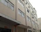 沙井后亭沙中路现有一楼1500平公摊面积小厂房出租