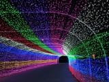 深圳工厂热销LED全彩户外防水外露灯串炫彩灯串七彩外露灯串