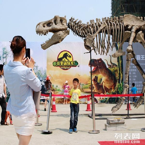 大型恐龙展览出租公司 恐龙租赁 展览租赁