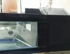 出1米8宽50的品牌鱼缸底滤带电脑版控制
