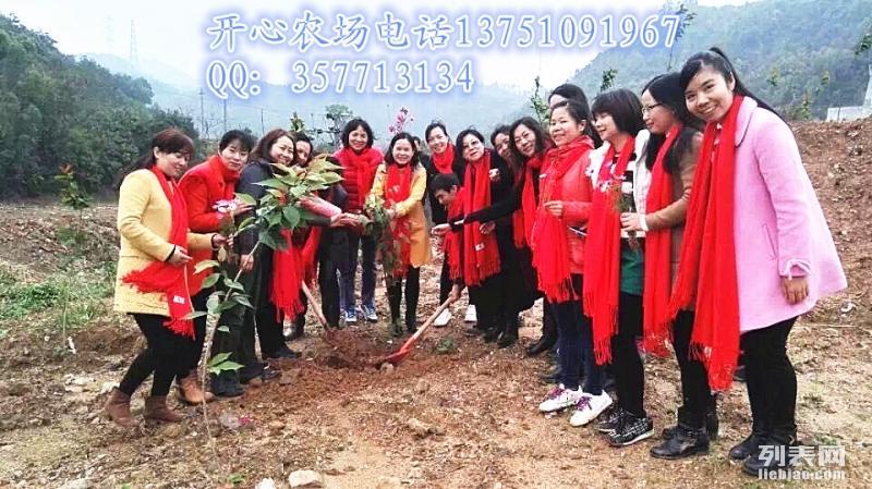 深圳最大的生态农场-菜博士开心农场