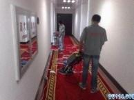 深圳罗湖区专业地毯清洗 地板清洗打蜡 提前预约价格优