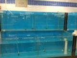 制作酒店 海鲜鱼缸 批发安装 海鲜制冷机 温控器