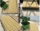 耐高温陶瓷电阻 耐高温陶瓷电阻价格 耐高温陶瓷电阻批发/采购