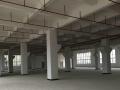 坑梓楼上带装修整层1100平带豪华装修水电