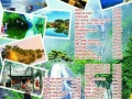 绵阳市康辉国际旅行社-科创园营业部-绵阳金牌旅行社