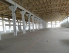 胡埭镇11500可分割一楼独门独院标准厂房出租