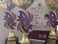 思语琴社专业古筝培训