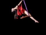 忻州钢管舞爵士舞专业培训,十年老校区专注成人0基础培训