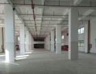 北环义英 厂房 3600平米