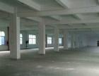 宝安西乡独院 厂房 8000平米 招租大小可分
