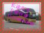 杭州到唐山的客车 大巴车 票价+15