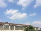 将军路 石门村南(紧靠张博路) 厂房 1260平米