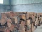 山东潍坊大量批发销售正宗缅甸花梨红木料,缅甸红酸枝木料,