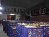 各种沃柑 火龙果大量批发--广西山山秀果