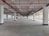 全新红本独院标准厂房