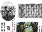 望江摄影摄像2017年航拍纪念册同学录