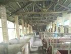 经营生态农庄,养殖场寻求合作伙伴