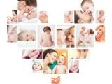亲子教育/幼儿辅导教育/母婴护理