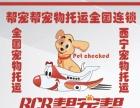 西宁宠物托运全国宠物托运找十年西宁帮宠帮公司李强