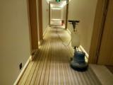 南京洗地毯公司 羊毛地毯清洗公司 保洁公司