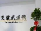 炎龙武道馆招收跆拳道,散打,女子防身术,双截棍学员