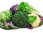 西站专业蔬菜配送