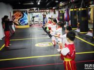 丰台少儿武术培训哪里有-丰台少儿武术班武术高级教练代课