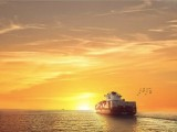 跨境电商物流海运拼柜不选你就亏大了