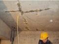 吴兴区房屋补漏吴兴区卫生间漏水修补湖州厂房漏水补漏,防水公司