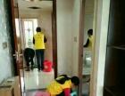 黄马褂曹操到家政保洁