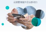 成都金蝶KIS云專業版軟件 歡迎在線咨詢
