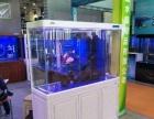 东营森森水族生态鱼缸促销