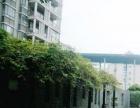 金山大道大润发大榕树创意园北京金山精装电梯大房中庚城万达