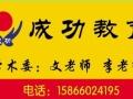 成功中小学教育:高考艺术生文化课辅导名师圆你大学梦