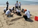 深圳公司团队海边一日游专业策划较受欢迎
