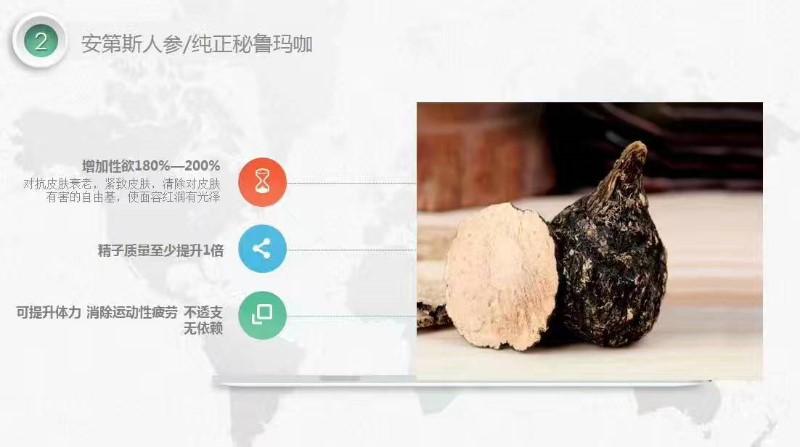 初心家族精锐部队肉肉是初心家族陕西总代理吗?