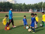 貝克體育培訓足球培訓暑期熱招中
