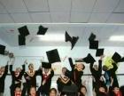 智慧田情商培養、心理輔導、注意力、學習能力訓練教育