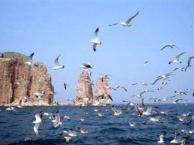 蓬莱、长岛 渔家乐 四日游