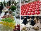巴西烧烤/派对庆典活动定餐/深圳周边上门办宴会酒席