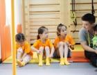 大连儿童体适能训练馆优势?加盟投资需要多少钱